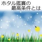 ホタル(蛍)鑑賞の見頃時期の季節や時間帯は?天気は雨でもいい?