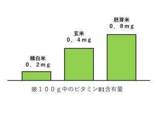 ビタミンB1含有量