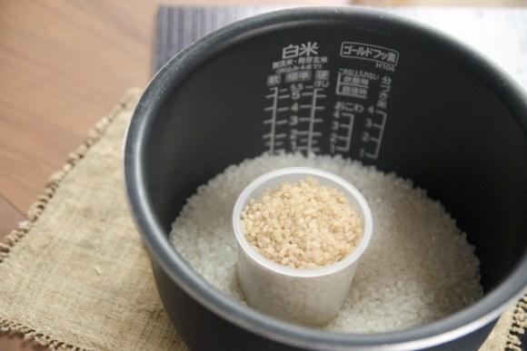 白米と玄米の違いとは?糖質制限するのに玄米なら大丈夫!?