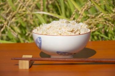玄米?それとも3分づき米?栄養面ではどちらを食べるべき?