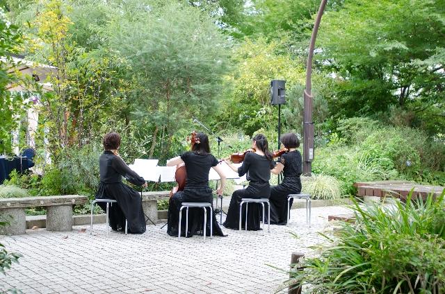 睡眠を促してくれる効果的な音楽はクラシック