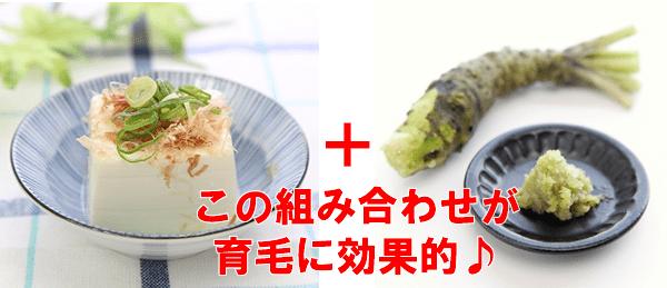 豆腐とわさびで育毛