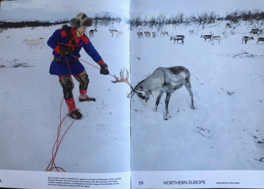 MIgrant Journal - Reindeer Herder