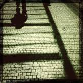 Shadows on cobblestones.