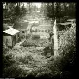 Cabins and gardens