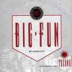 Inner City - Big Fun