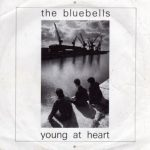 The Bluebells - Young At Heart