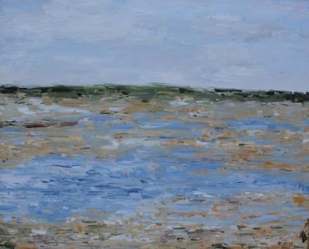 Shorebird Marsh, California
