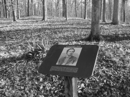 Colonel Dan McCook Jr. was mortally wounded on this spot