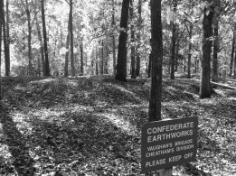 Remnants of intricate Confederate trenches