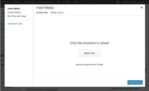 WordPress Upload and Insert Media