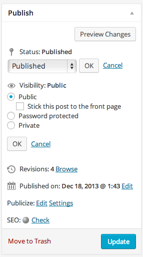 WordPress Publishing Options