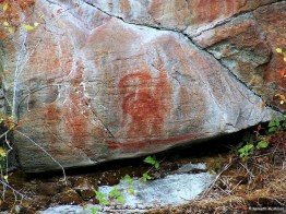 Pictograph - Earls Cove 4