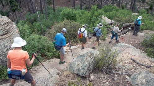 Hiking group (1 of 1)-16 blog