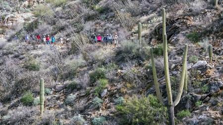 SCVN Hike on Phoneline Trail