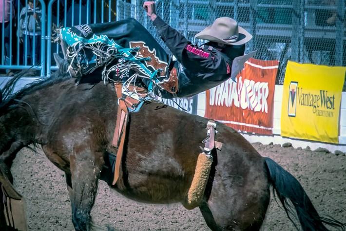 rodeo-2017-0742-blog