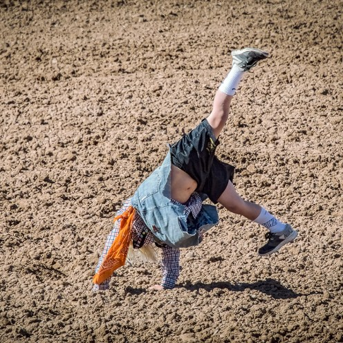 Rodeo 2017-0751 blog