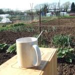 Tea mug resting on box next to allotment