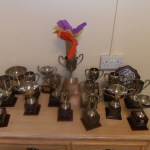 Edith Court: previous trophies
