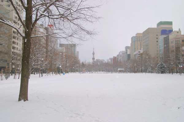 札幌大通公園 冬 雪