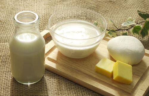 乳製品 ヨーグルト 牛乳 チーズ