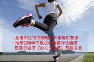 """一日に歩くべき最適歩数は8,000歩! (3)  歩く事に加える簡単な筋トレで """"血管力"""" を上げる"""