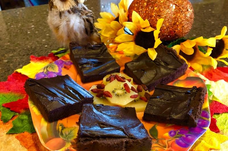 Raw Vegan Pumpkin Brownies