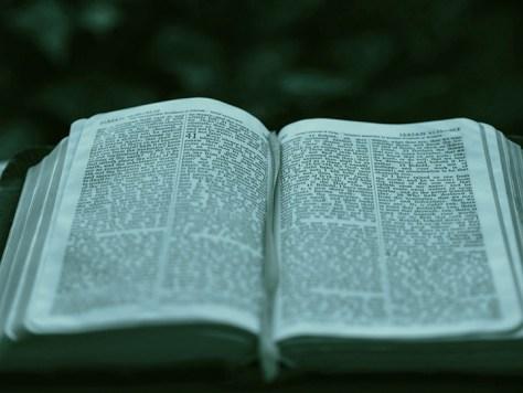 Isaiah 40 Bible