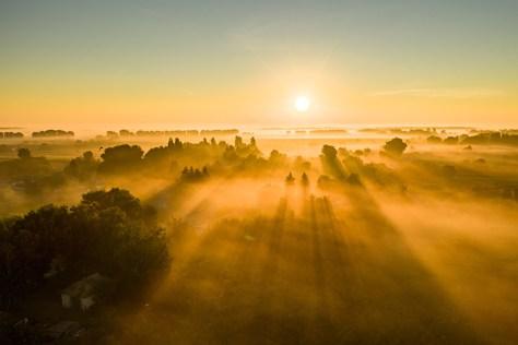 Sun beams shining across a field