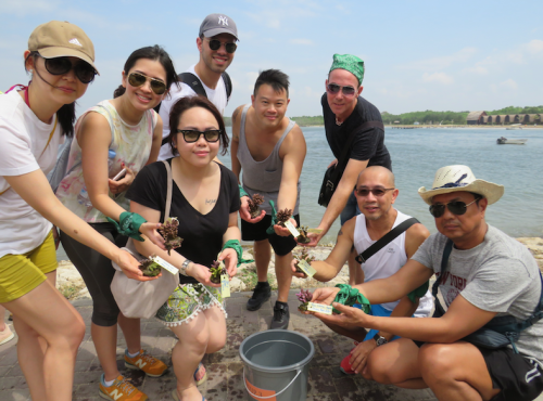 Coral Triangle Foundation Volunteers