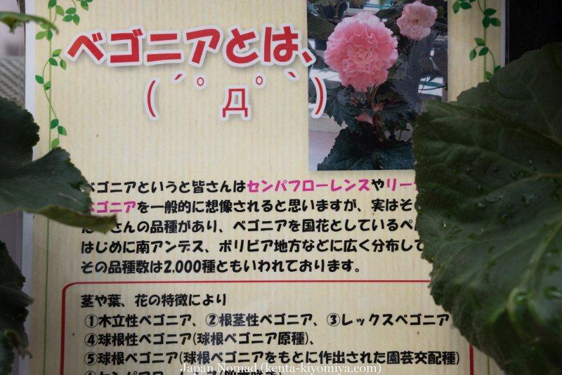 自転車日本一周37日目(厳美渓)-Japan Nomad (39)