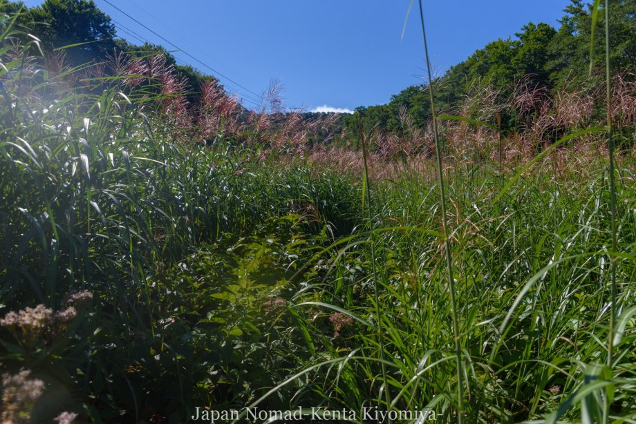 自転車日本一周123日目(岩木山)-Japan Nomad (41)