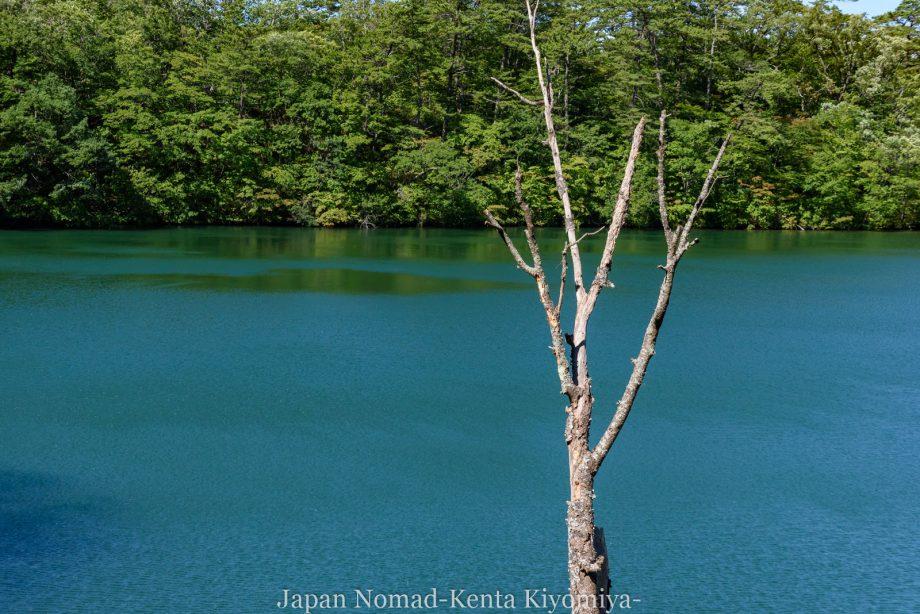 自転車日本一周125日目(白神山地、白神岳)-Japan Nomad (19)