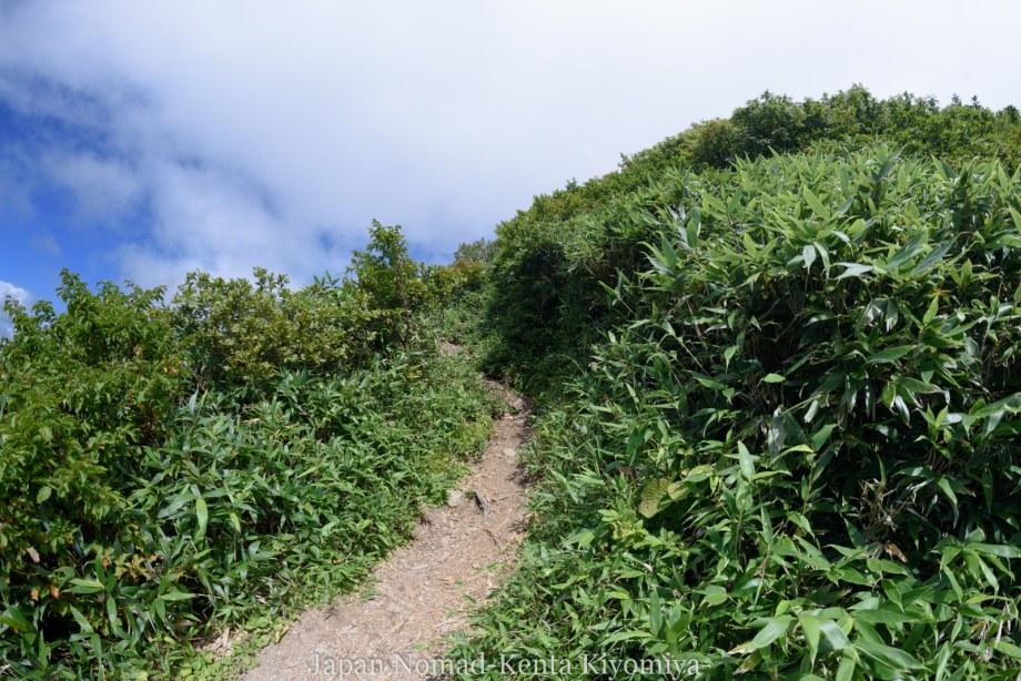 自転車日本一周125日目(白神山地、白神岳)-Japan Nomad (43)