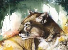 anthony-burks lionness