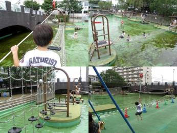 Koto park 1