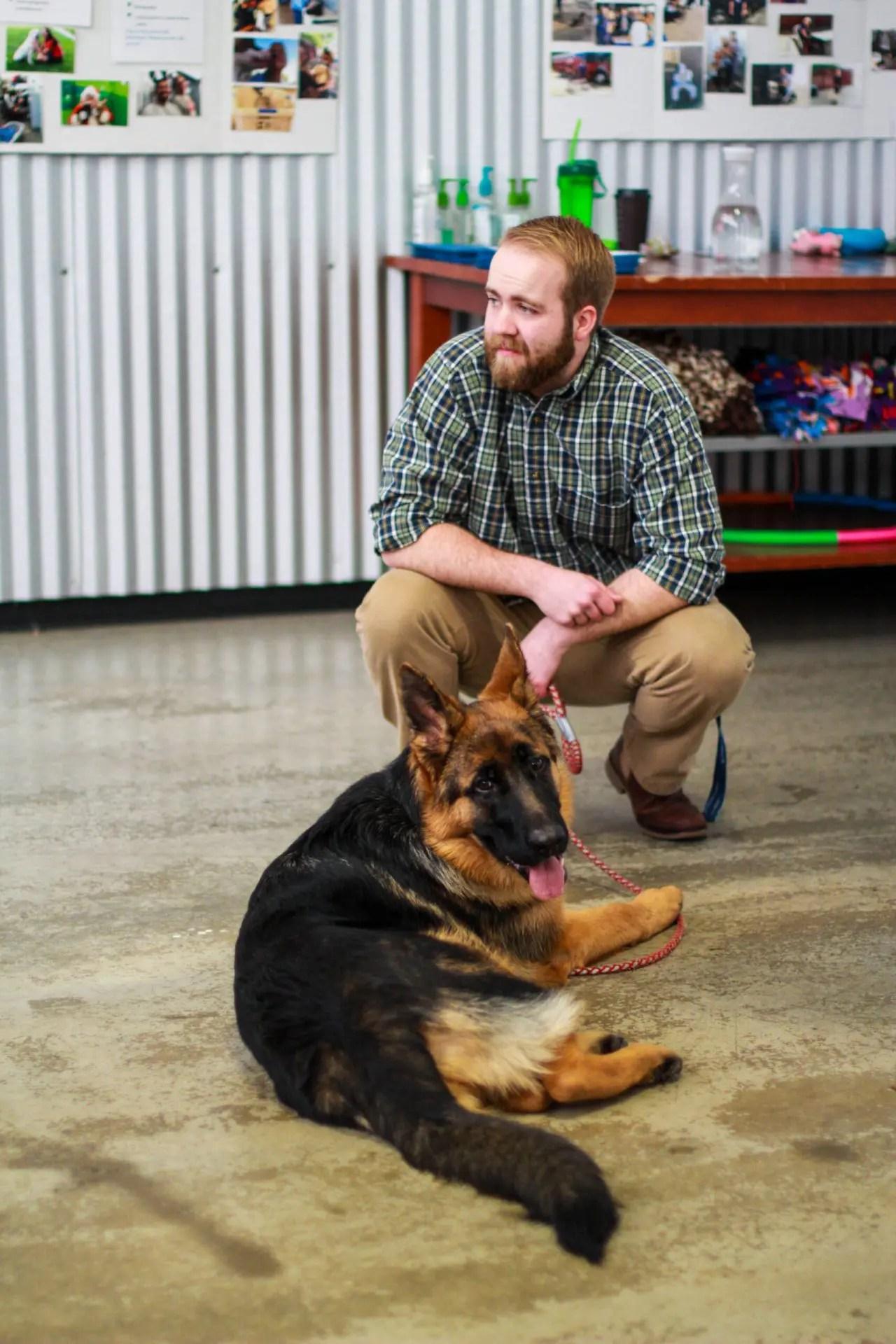 german shepherd ky