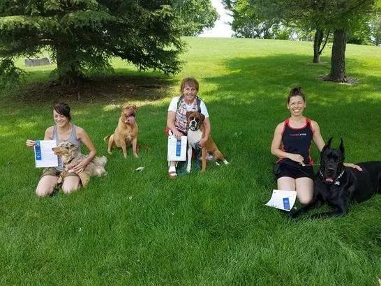 dog training union KY