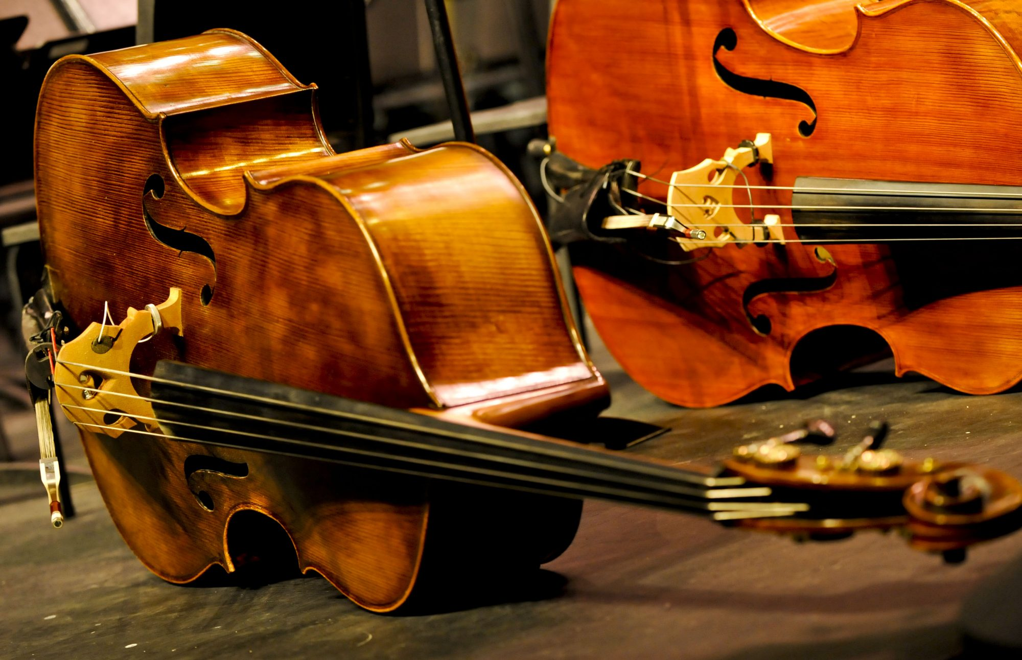 Play Bass with the Kentuckiana Philharmonic!