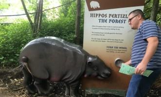 zoo joel hippo