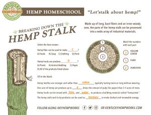 Hemp Stalk Answer Key