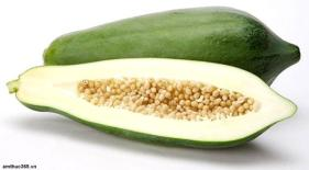 resep-sayur-buah-pepaya-muda-telur-tempe-kuah-santan-oleh-chandra-ekajaya-3