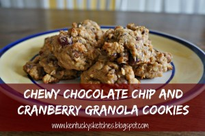 Chewy Chocolate Chip and Cranberry Granola Cookies