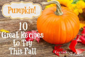 PUMPKIN!  10 Great Recipes to Try this Fall