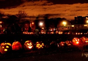 The Pumpkin Walk Is Coming … October 19th