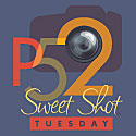 P52 Sweet Shot Tuesday with Kent Weakley