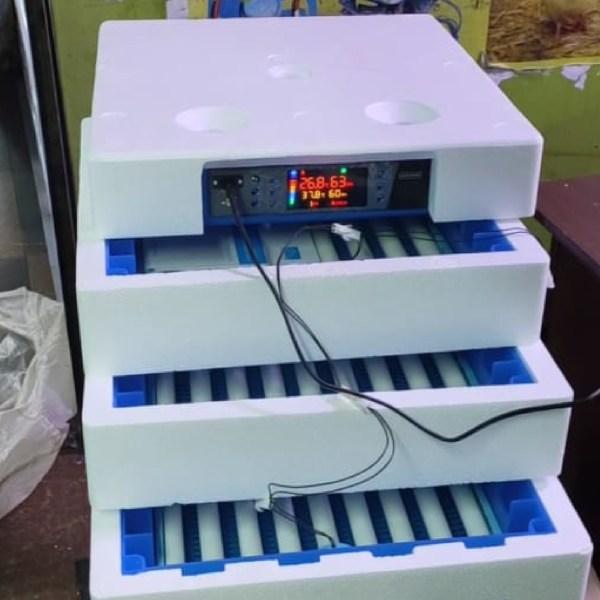 256-eggs-incubator