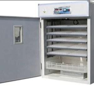 880-Eggs-incubator