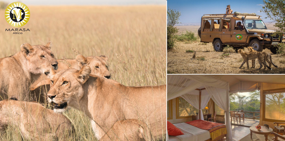 Maasai Mara Packages 3 Nights/4 Days- October-November 2019- Mara Leisure Camp