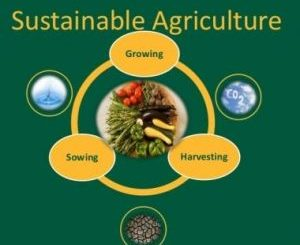 Best Sustainable Agriculture Colleges - Certificate & Diploma Courses